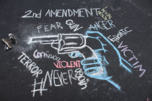GUN VIOLENCE: A NATION DIVIDED - A RURAL VIEW